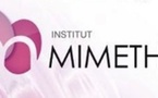 Institut MIMETHYS, Psychothérapie de la Crise