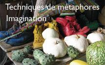 Art des Contes. Techniques de métaphores, Imagination. Formation Institut Milton Erickson Avignon - Provence